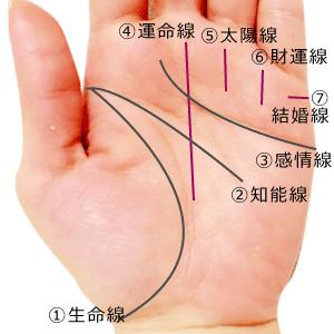 手相の基本7大線