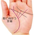 生命線から指に向かう支線がある手相