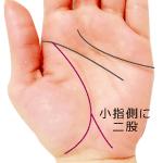 生命線が小指側に大きく二股の手相