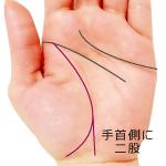 生命線が手首側に大きく二股の手相