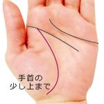 生命線が標準的な長さの手相