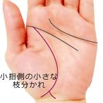 生命線の末端が小指側に小さく分かれる手相