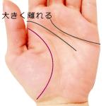 生命線と頭脳線が大きく離れる手相