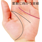感情線から薬指に向かう支線がある手相