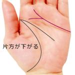 感情線の二股の片方の支線が下がる手相