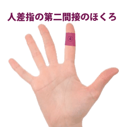 人差指の第二間接にあるほくろ占い