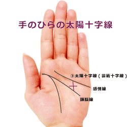 手相の太陽十字線・芸術十字線