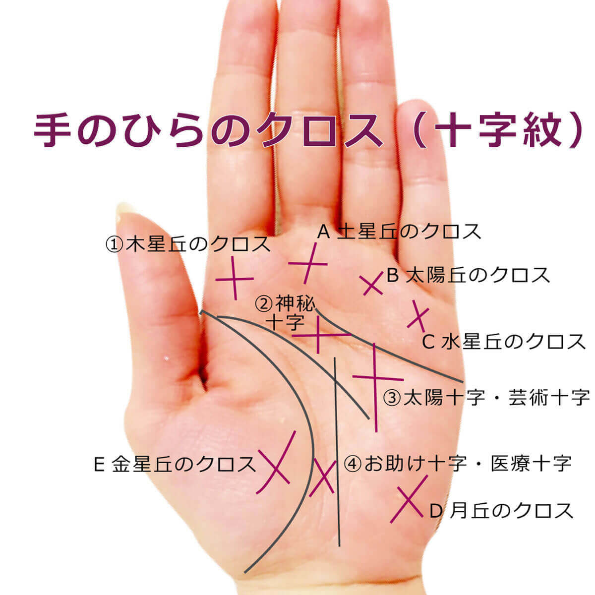 手のひらのクロス
