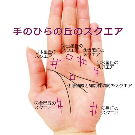 手のひらの丘に出るスクエア・井の字紋