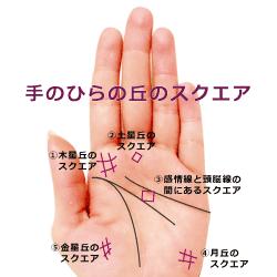 手のひらの丘のスクエア.四角紋