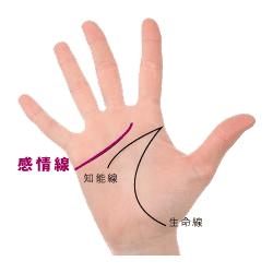 手相の感情線の画像