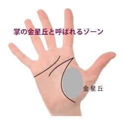 手のひらのビーナス