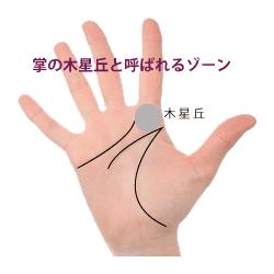 人指し指の下の木星丘