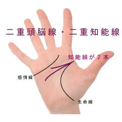 二重知能線・二重頭脳線と呼ばれる手相