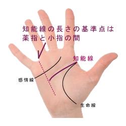 手相の知能線の長さの基準