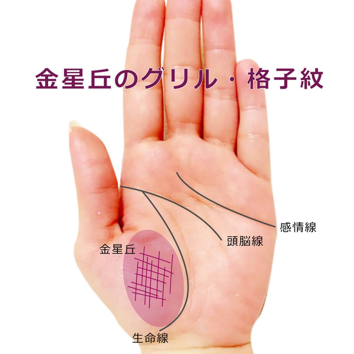 親指 の 付け根