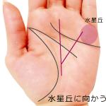 運命線から小指に向かう支線がある手相