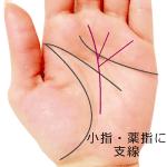 運命線に小指と薬指に向かう支線がある手相(覇王線)