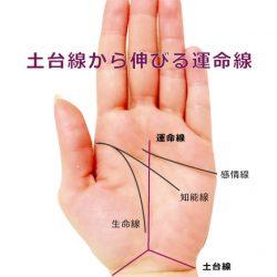 土台線・手首の三角から伸びる運命線