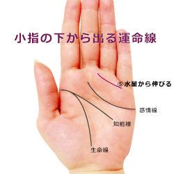 小指の下から運命線が伸びる手相