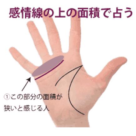 感情線と指の間の面積占い