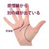感情線の枝分かれ(3) 上向きに別の支線が出ている手相