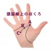 2.手相の頭脳線(知能線)上にあるほくろ占い
