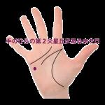 手のひらの小指寄りの感情線の下(第二火星丘)にあるほくろ占い