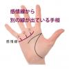 感情線の枝分かれ(8) 別の線が指に向かって出ている手相