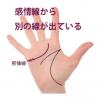 感情線の枝分かれ(5) 起点の上下に別の支線が出ている手相(ユーモア線・機知線)