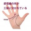 感情線の枝分かれ(2)三股以上に分かれている手相