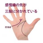 感情線の枝分かれ(2) 三股以上に分かれている手相
