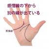 感情線の枝分かれ(4) 下向きに別の支線が出ている手相(慈愛線)