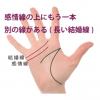 感情線の上にもう一本別の線がある手相-その5(長い結婚線)