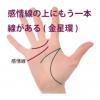感情線の上にもう一本別の線がある手相-その3(金星環・金星帯) 5種