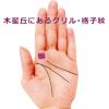 人差指のつけ根(木星丘)に網目のようなグリル(格子紋)がある手相