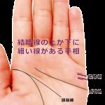 結婚線の上や下に平行して細い線が出ている手相(浮気線)