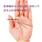 生命線から人差し指に向かって立ち上がる線(向上線・希望線)がある手相