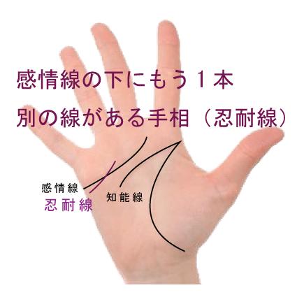 感情線の下にもう一本別の線がある手相-その3(忍耐線)
