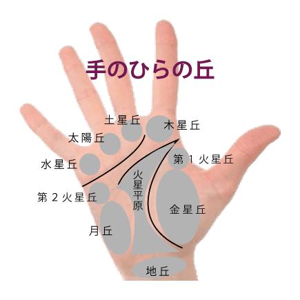 手のひらの凹凸で占う手相(丘の意味)