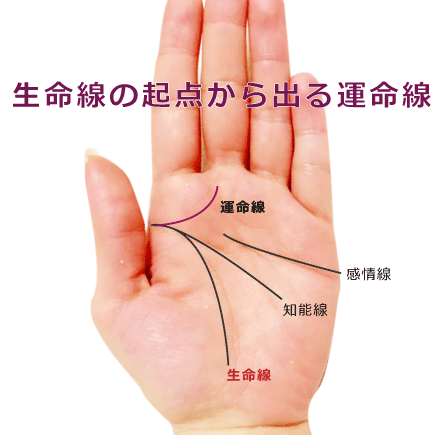 運命線が生命線の起点から延びる手相の意味