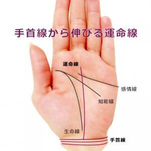 運命線が手首線から延びる手相