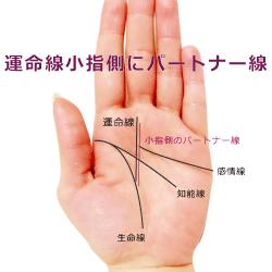 運命線の小指側にパートナー線が出る手相