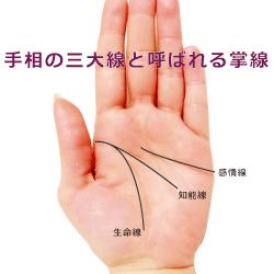 手相の三大線と呼ばれる掌線