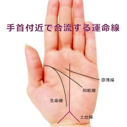 手首の上あたりで二股に別れている運命線