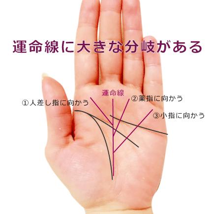 運命線が大きく枝分かれしている手相の見方(運命線の分岐・支線)