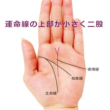 運命線のゴール(上)が二股に分岐している手相の見方