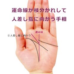 運命線が枝分かれして人差し指の見方