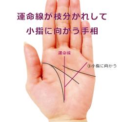 運命線が枝分かれして小指に向かう手相