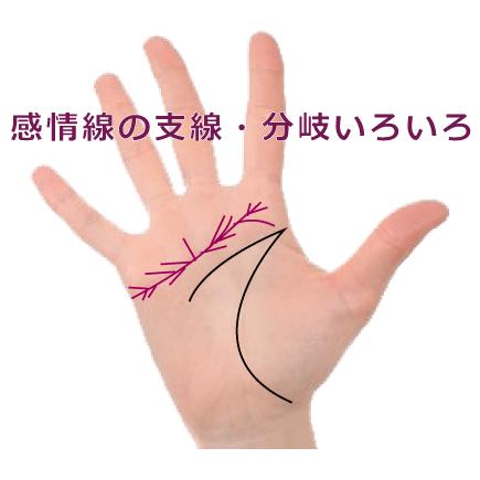 感情線に支線や枝分れがある手相いろいろ
